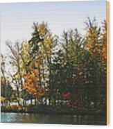 Autumn Color On The Fulton Chain Of Lakes Wood Print