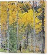 Autumn Colorado-1 Wood Print