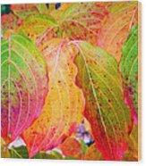 Autumn Colored Leaves Wood Print