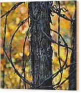 Autumn Colors 1 Wood Print
