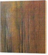 Autumn Colors IIi Wood Print