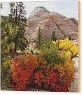 Autumn Colors In Zion's Highlands-ut Wood Print