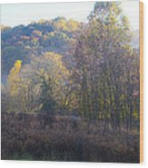 Autumn Colors Of Valley Forge Wood Print by Bill Cannon