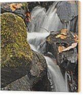 Autumn Colors On Big Crabtree Creek Wood Print