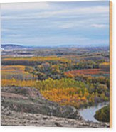 Autumn Colors On The Ebro River Wood Print