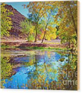 Autumn Colours In Moab Wood Print