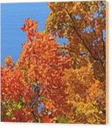 Autumn Contrasts Wood Print