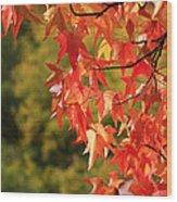 Autumn Cornered Wood Print