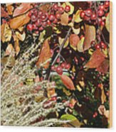 Autumn Crabapples And Tall Grass Wood Print