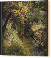 Autumn Creek Wood Print