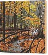 Autumn Creek In The Rain Wood Print