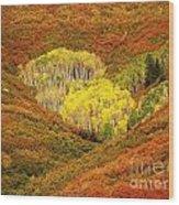 Autumn Crest Wood Print