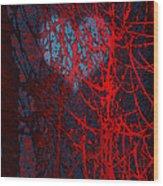 Autumn-crisp And Bright Wood Print