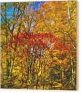 Autumn Cul-de-sac - Paint Wood Print