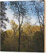 Autumn Days Wood Print