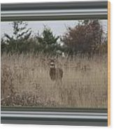 Autumn Deer Wood Print