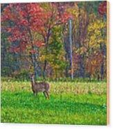 Autumn Doe - Paint Wood Print