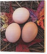 Autumn Eggs Wood Print
