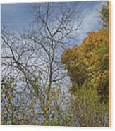 Autumn Ending Wood Print