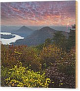 Autumn Evening Star Wood Print
