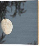 Autumn Evenings Wood Print