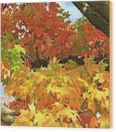 Autumn Extravaganza Wood Print