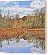 Autumn Fades Wood Print