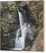 Autumn Fall Wood Print by Bill Wakeley