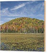 Serene Pond Vermont Autumn Panorama Wood Print