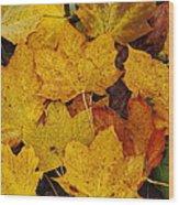 Autumn Fallen Maple Wood Print