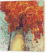 Autumn Fantasy 1 Wood Print