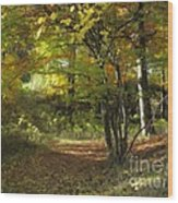 Autumn Feeling Wood Print