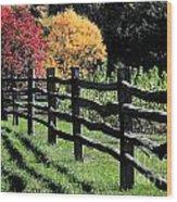 Autumn Fence And Shadows Wood Print