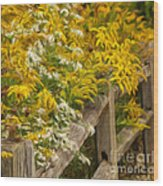 Autumn Fence Wood Print