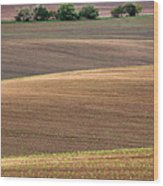 Autumn Fields Of Moravia Wood Print