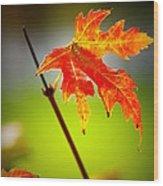 Autumn Fire Wood Print