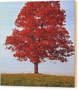 Autumn Flame Wood Print
