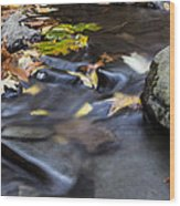Autumn Flow Wood Print by Andrew Pacheco