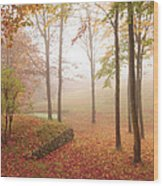 Autumn Fog Wood Print