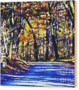 Autumn Forest Road V6 Wood Print