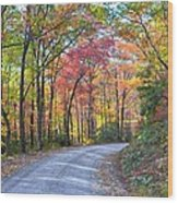 Autumn Forest Trail Wood Print by Bob Jackson