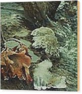 Autumn Frozen In Time Wood Print