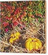 Autumn Garden Wood Print
