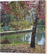 Autumn Glory Wood Print