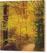 Autumn Glow Wood Print