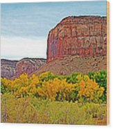 Autumn Gold On Highway 211 Going Into Needles District Of Canyonlands National Park-utah   Wood Print
