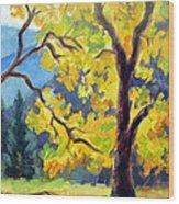 Autumn Gold Yosemite Valley Wood Print