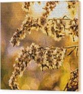 Autumn Goldenrod - Paint  Wood Print