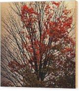 Autumn Goodbyes Wood Print