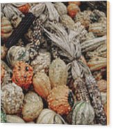 Autumn Gourds 2 Wood Print